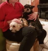 Kiky und Mitzy zuhause