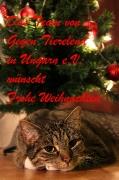 Frohe Weihnachten wünscht Gegen Tierelend in Ungarn e.V.